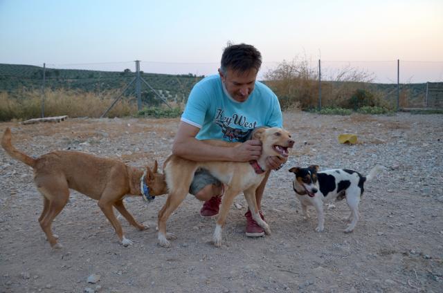 sid-fadderhund-gpar-3